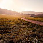 Brandschutz in der Landwirtschaft – darauf sollten Sie achten